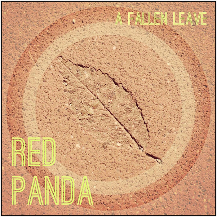 A fallen leave Red Panda