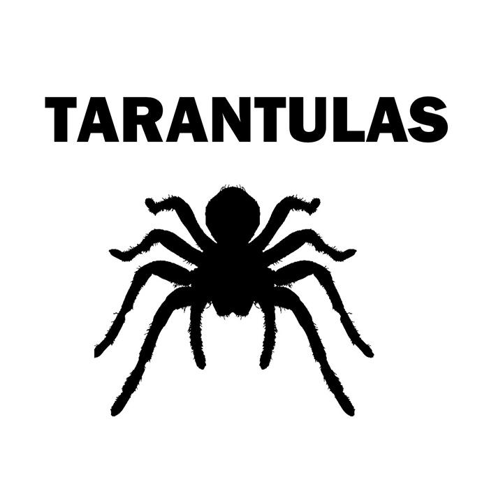 Tarantulas Tarantulas